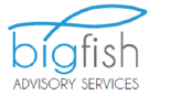 Bigfish Advisory Services